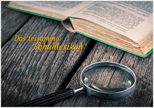tessamino-blog-schuhlexikon